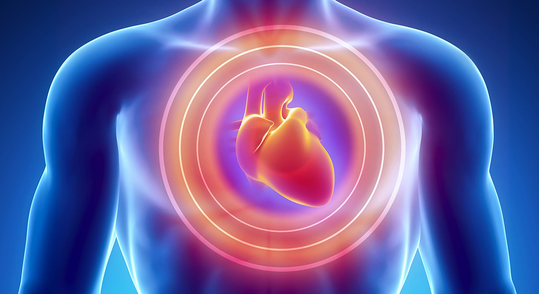 Heart health. Photo: Colourbox
